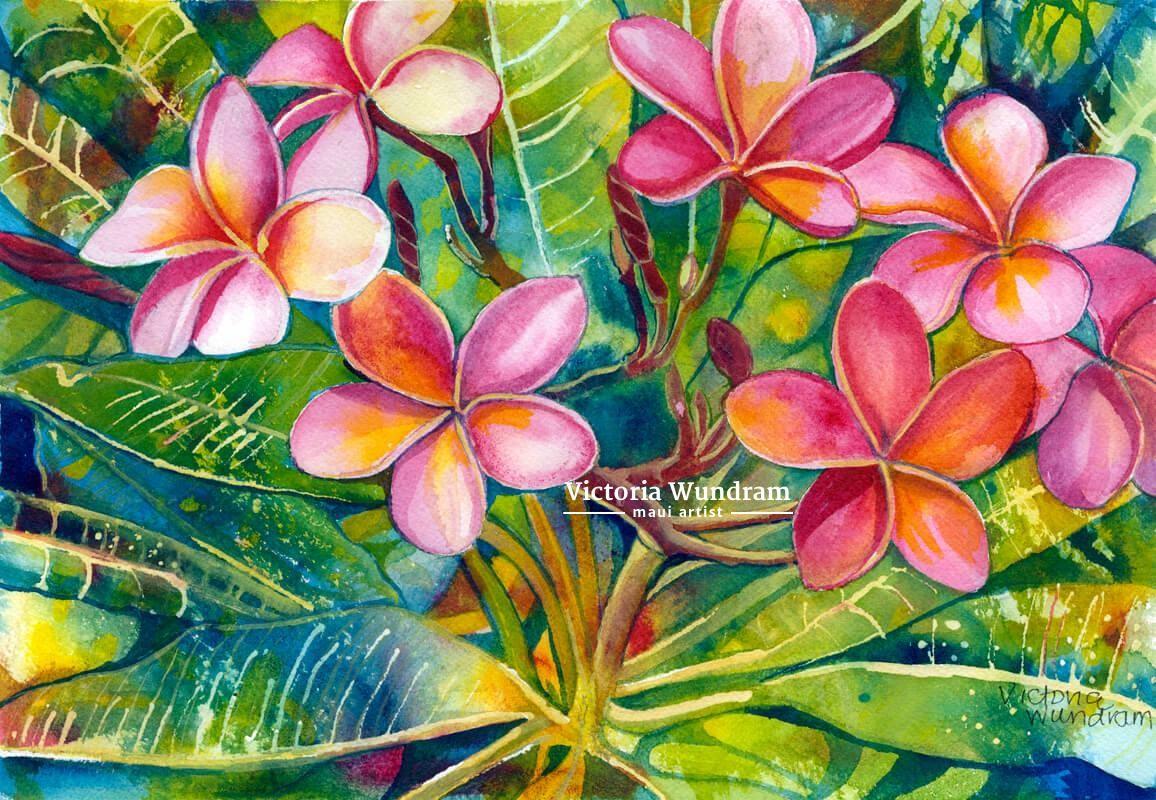 Victoria Wundram | Maui Artist | Backyard Plumeria