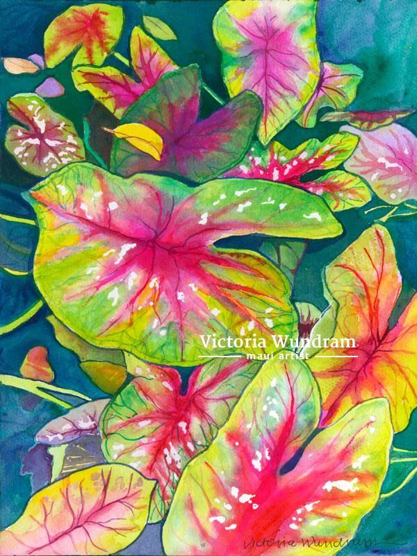 Victoria Wundram | Maui Artist | Calladium