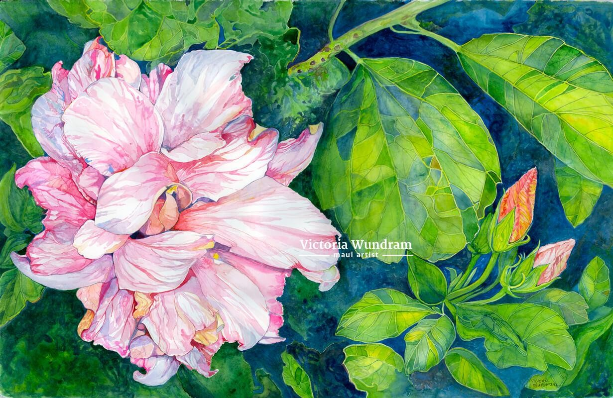 Victoria Wundram | Maui Artist | Double Pink Hibiscus #1