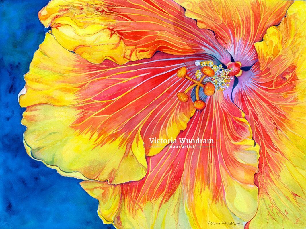 Victoria Wundram | Maui Artist | Mary Ann's Hibiscus