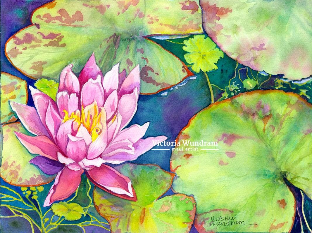 Victoria Wundram | Maui Artist | Water Lily