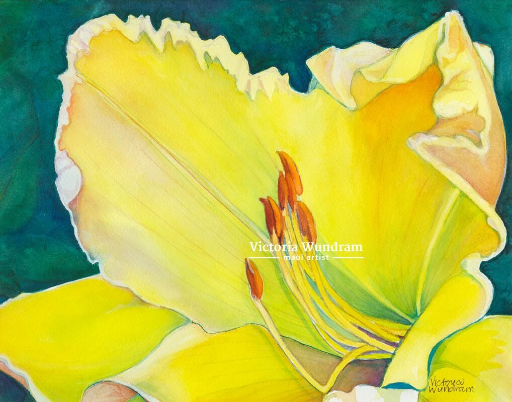 Victoria Wundram | Maui Artist | Yellow Lily