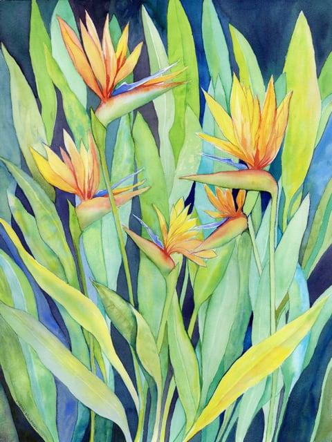Victoria Wundram | Maui Artist | Bird Family